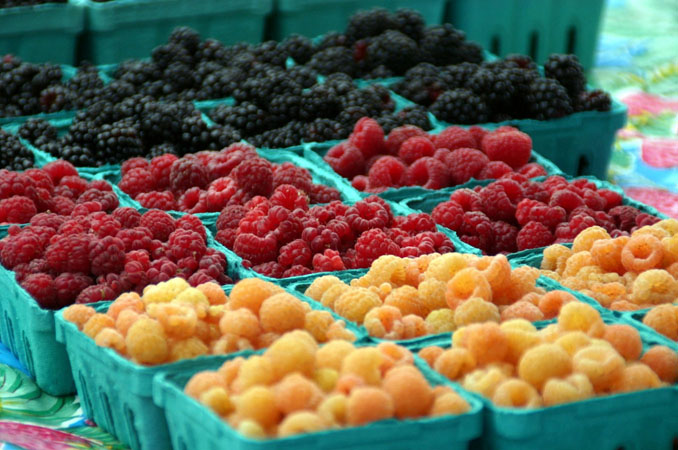 Sebastopol Farmers Market