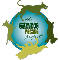 Green Dog Rescue Project